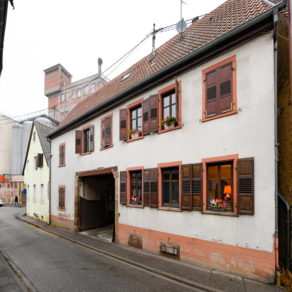 Offres de vente Immeuble Hochfelden 67270