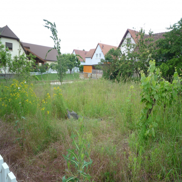 Offres de vente Terrain Truchtersheim 67370